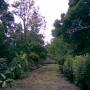 Se Vende Agradable Parcela con Casa en Tacarigua