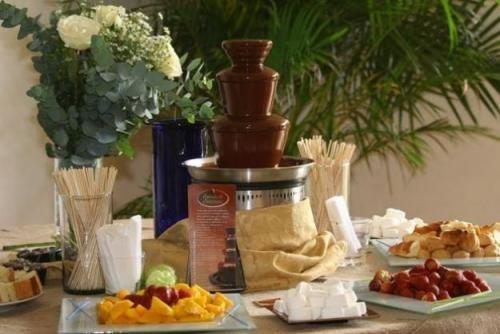 Fotos de Alquiler de fuente de chocolate, queso fundido, coctel. 1