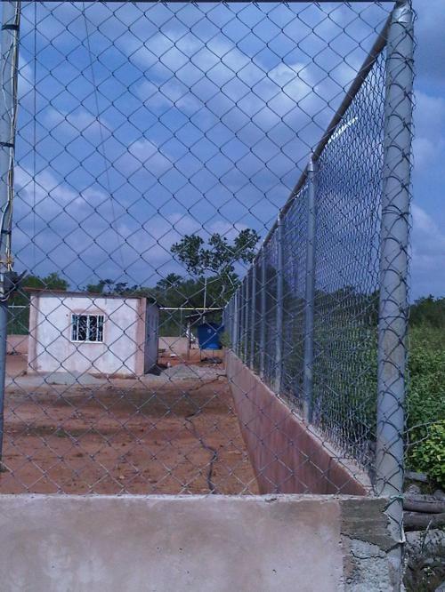 Fotos de Galpones, casa y terreno para cria de cerdos con agua y luz 1