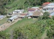 Vendo terreno y casa para el cultivo de flores en JAJO, Trujillo código  10-6549