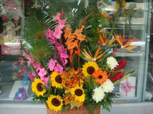 Clases de floristeria basica, media y avanzada