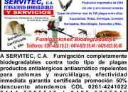 Fumigaciones Servitec 50% de descuento!