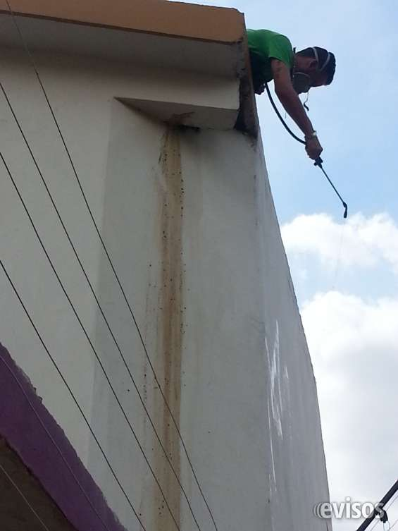 Fumigacion para casas en maracaibo 04146535347