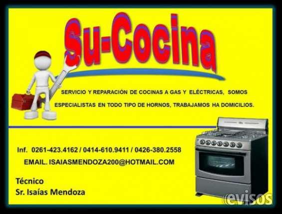 Especialistas de hornos y cocinas.