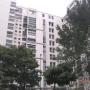 Alquiler apartamento en Terrazas del Avila
