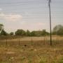 terreno marhuanta