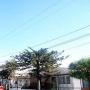 Vendo Quinta en Urbanizaciòn del Este, a 3 Cuadras del Sambil.