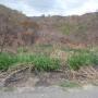 Vendo Atractivo Terreno, en Zona Norte de Maracay, Lomas de Palmarito, El Castaño.