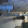 Sistemas de Bombas y Plomeria (suministro y mantenimiento)