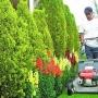 Se solicita Ayudane de Jardinero y limpieza Con o Sin Experiencia