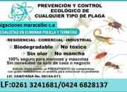 FUMIGACIONES ECOLOGICAS EN MARACAIBO C.A PRESUPUESTO GARTIS