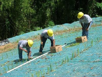 Ecomantos-biomantos-agromantos en venezuela